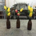 Tulips + Beer